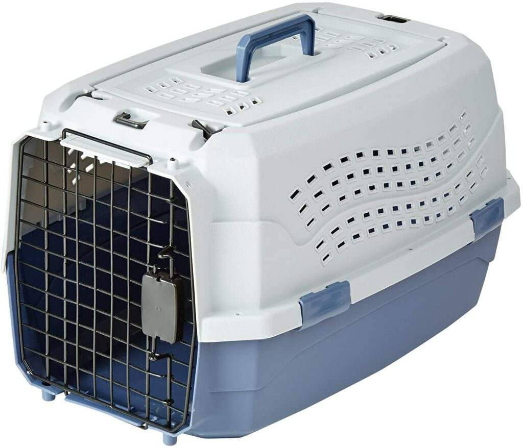 cage transport lapin nain